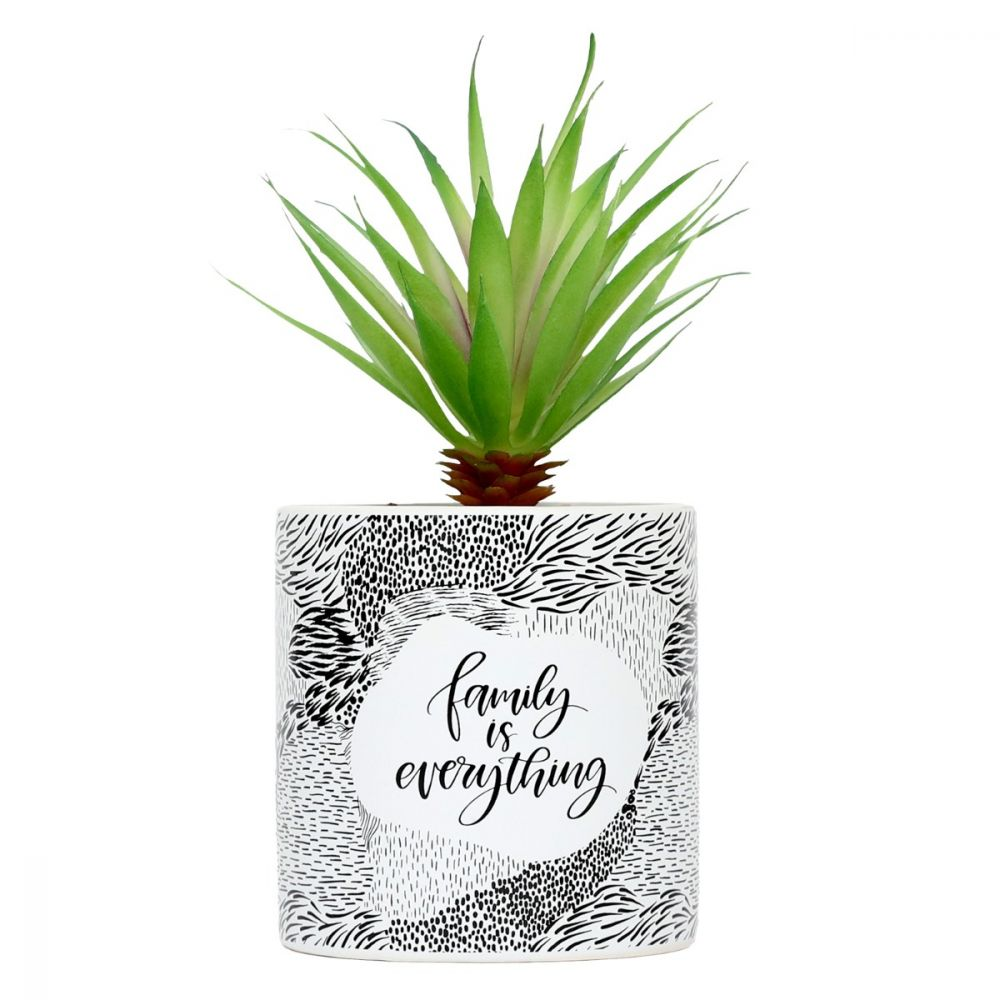 Emotive Pot Plants - Family Is Everything