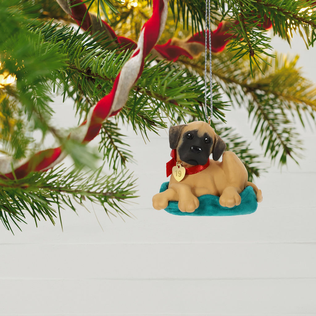 2019 Hallmark Keepsake Ornament - Puppy Love (Great Dane)